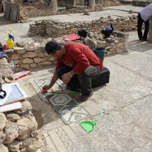 Regional Technician Training course: cleaning and documenting mosaics