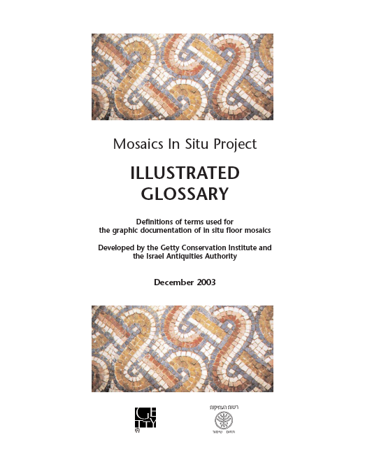 Definitions of terms used for the graphic documentation of in situ floor mosaics